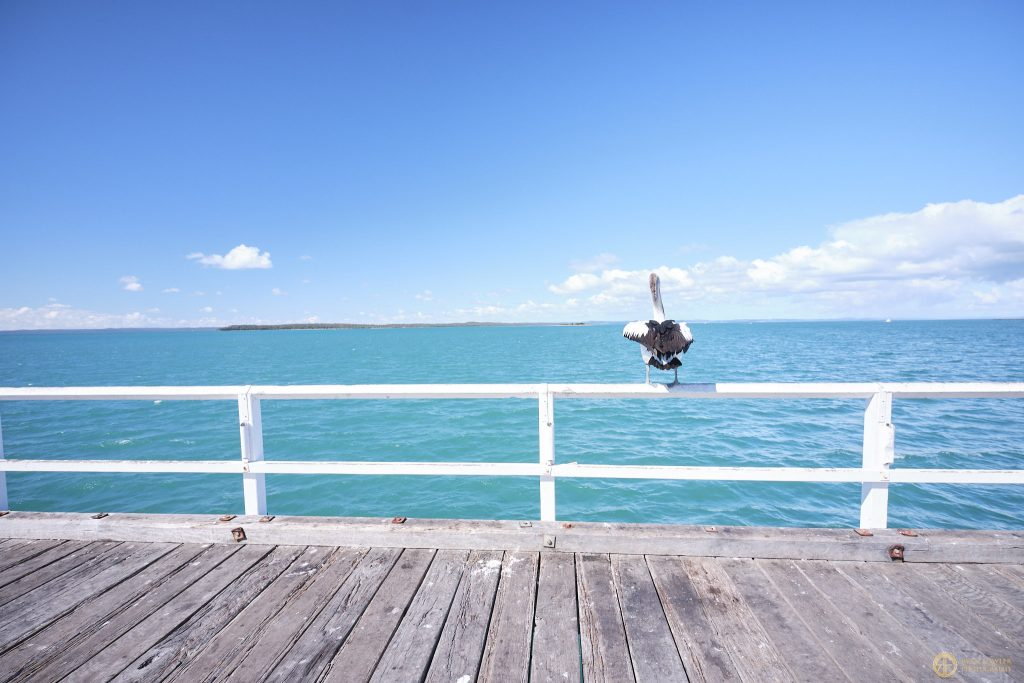 Urangan Pier - The Best Day Trip In Hervey Bay